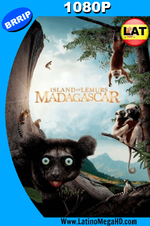 Island of Lemurs: Madagascar (2014) Latino HD 1080P ()