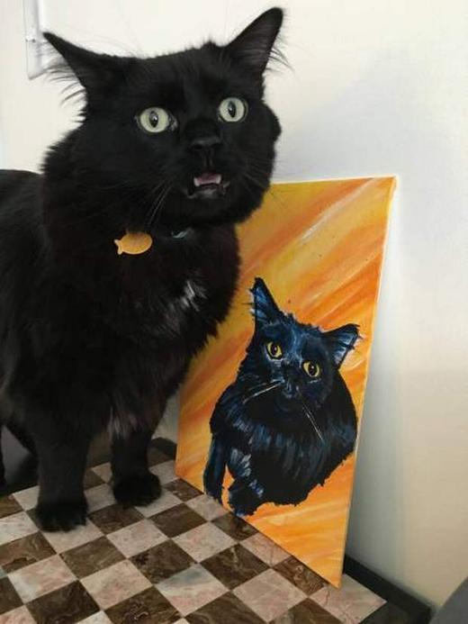 удвиленный кот и его портрет