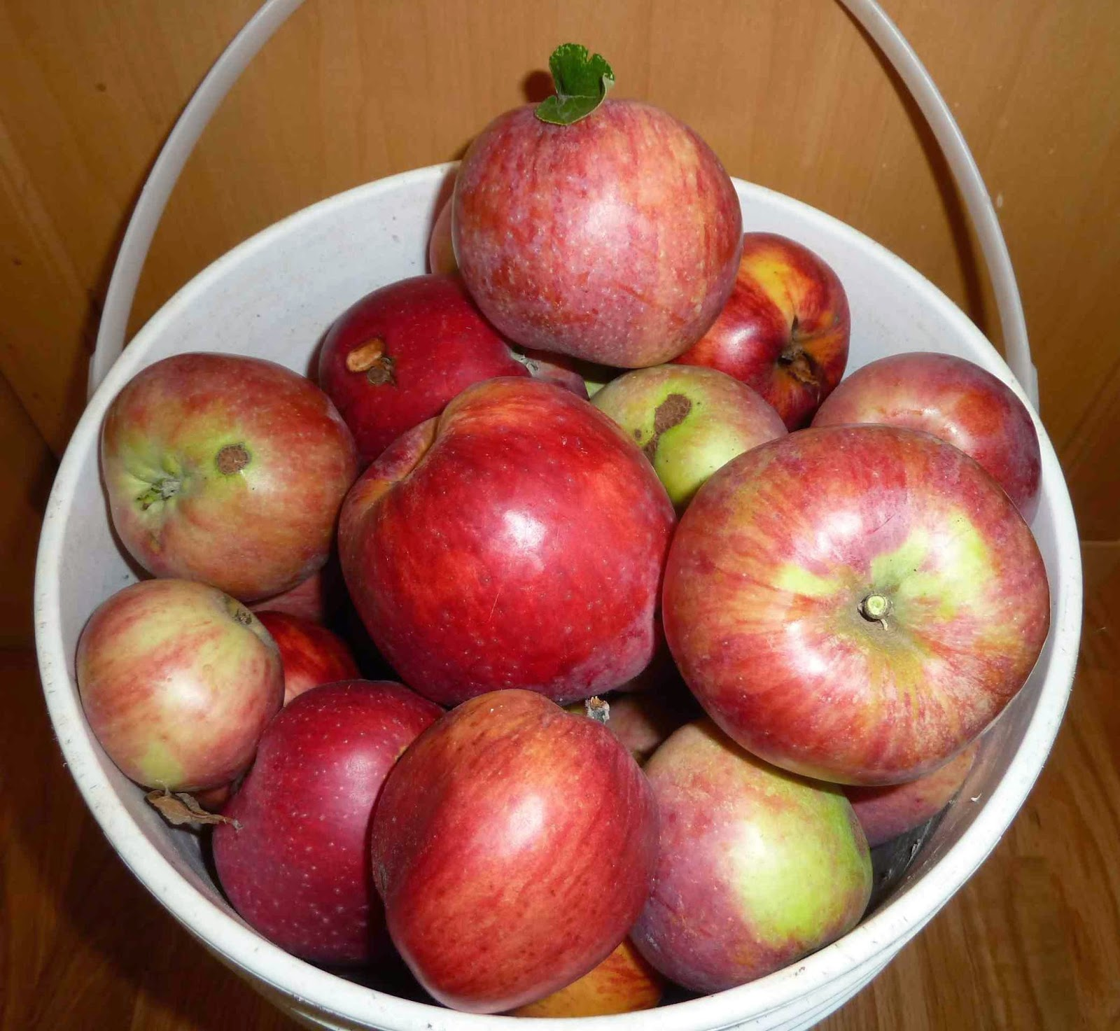 Apples For Putting In Cake What Kind