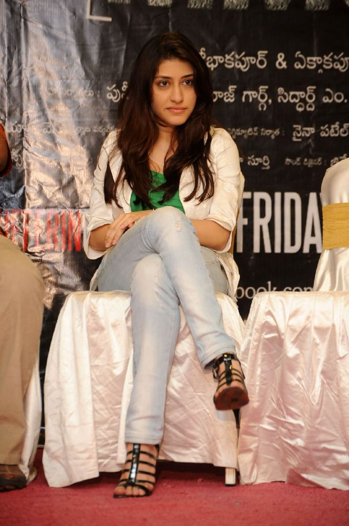 Kainaz Motivala at Ragini MMS Movie Pressmeet Stills