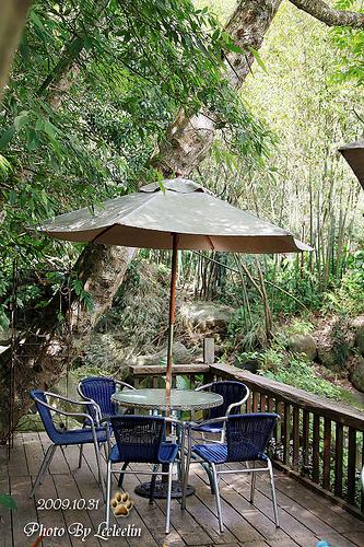 19號水岸咖啡館|陽明山景觀餐廳