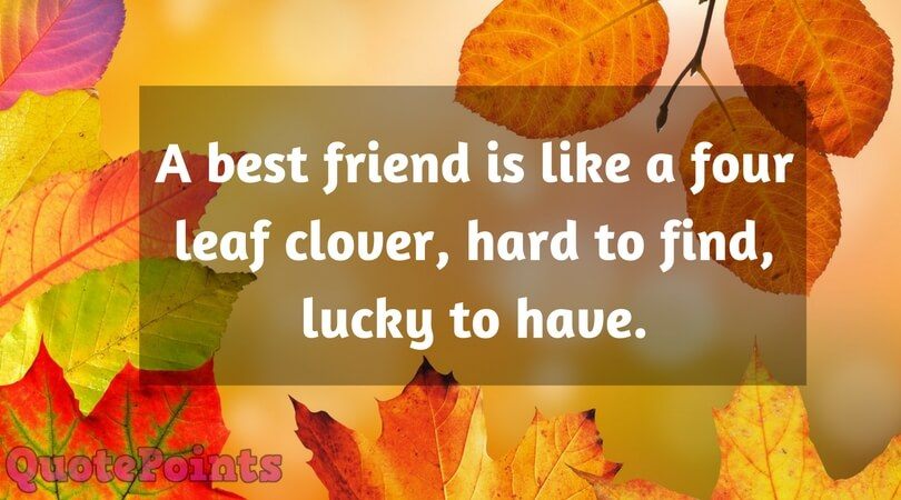 A Best Friend is Like Four Leaf Clover | Funny Quotes