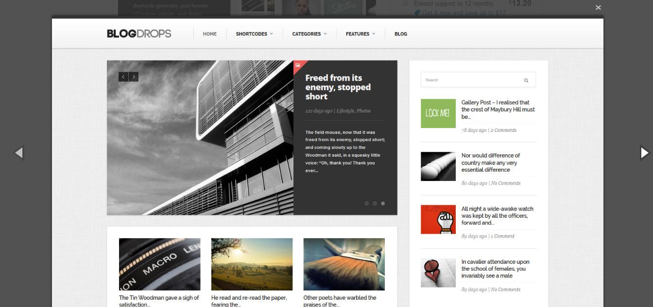 blogdrops-Best blogging grid Style theme