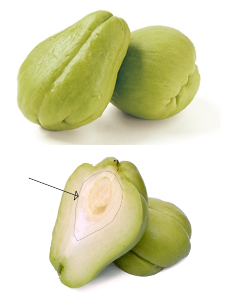 Chayote whole and cut