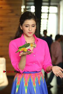 Actress Mannar Chopra in Pink Top and Blue Skirt at Rogue movie Interview  0055.JPG