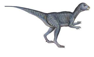 Abrictosaurus Dinozoru