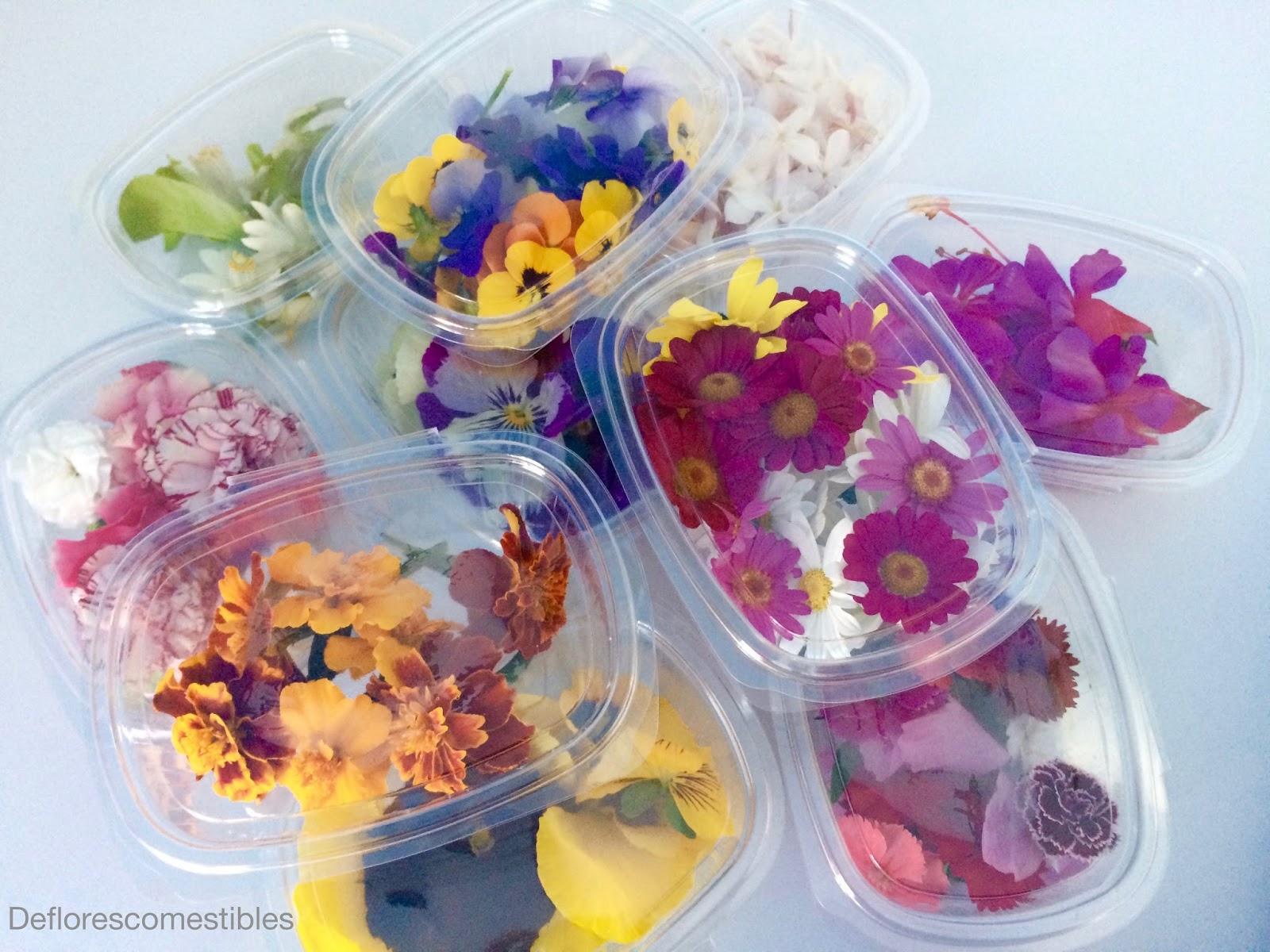 Conservar Las Flores Comestibles De Flores Comestibles