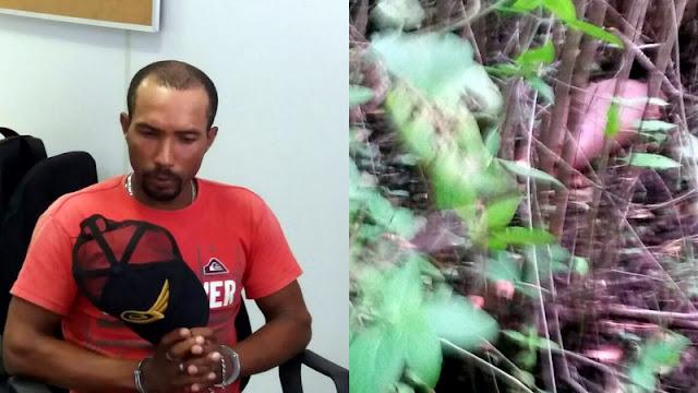 Homem é preso e confessa ter esquartejado a própria esposa em Itabaiana