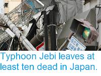 https://sciencythoughts.blogspot.com/2018/09/typhoon-jebi-leaves-at-least-ten-dead.html
