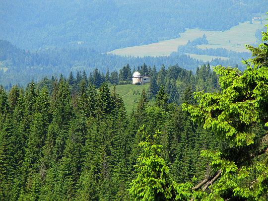Szczyt Suhora (1000 m n.p.m.) - widok ze stoków Turbacza.