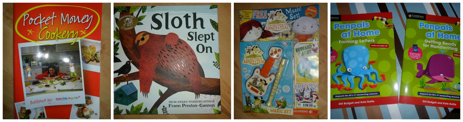 sloth slept on, pocket money cookery, abney teal, penpals at home book reviews uk