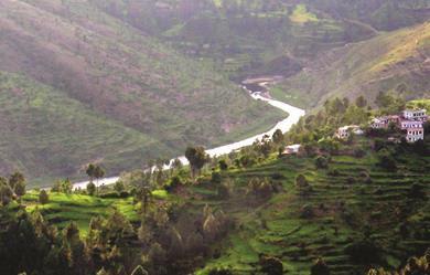 Lush green Peora village