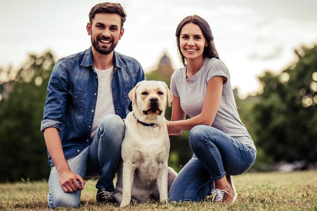 Obroże odblaskowe dla psa