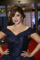 Payal Ghosh aka Harika in Dark Blue Deep Neck Sleeveless Gown at 64th Jio Filmfare Awards South 2017 ~  Exclusive 105.JPG