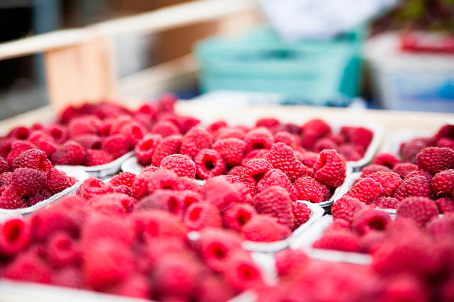 Alimentos ricos em antioxidantes e seus benefícios para a saúde