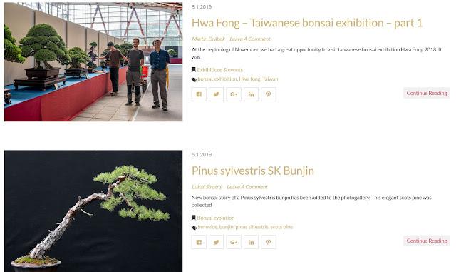 http://www.bonsaimoravia.cz/blog-page/
