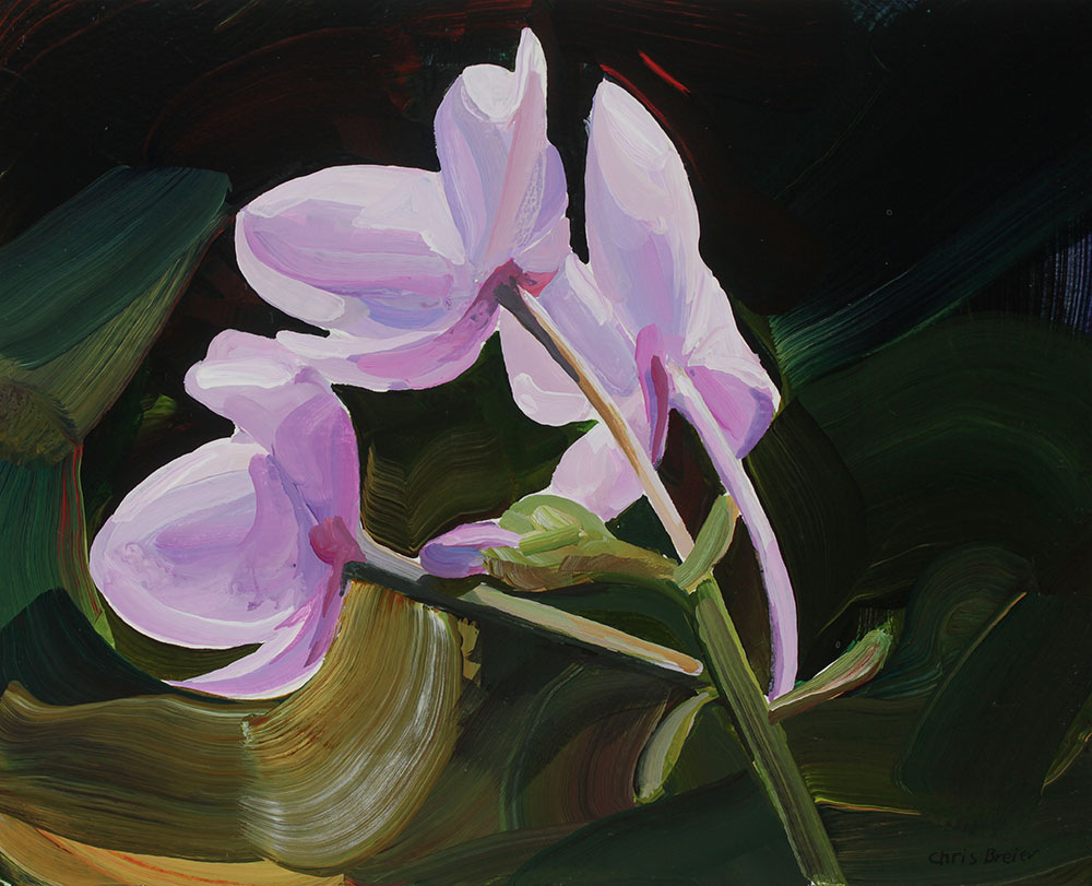 acrylic painting of pink flowers at the botanical gardens