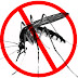 Six African countries to be Malaria free by 2020