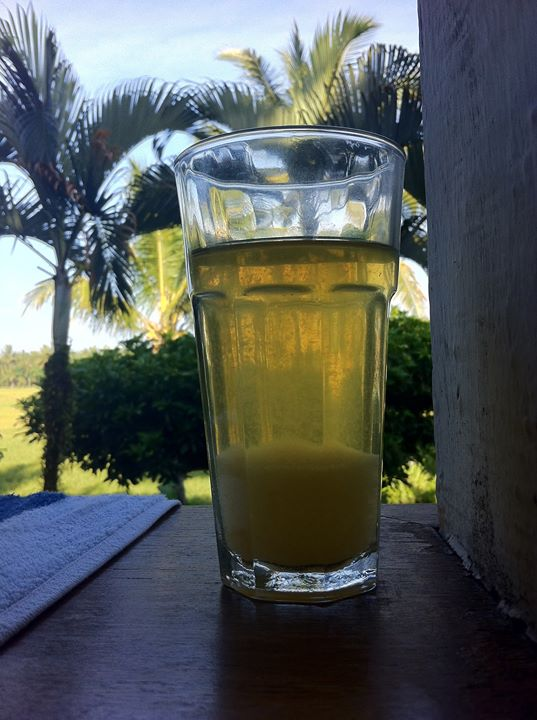 Detoxification Fasting Kidney Filtration