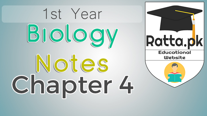 1st Year Biology Notes Chapter 4 The Cell - 11th Class Bio Notes