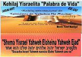 COMUNIDAD YISRAELITA DE CAROLINA N- EE.UU