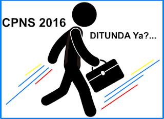 CPNS Tahun 2016 Ditunda, Instansi Diarahkan Lakukan Redistribusi PNS