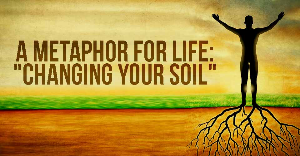 A Metaphor For Life: 'Changing Your Soil'