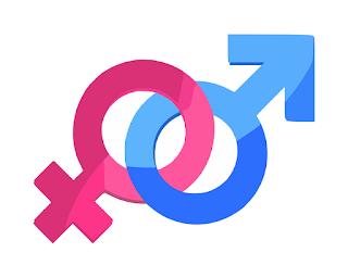 Gender Dalam Bahasa Indonesia