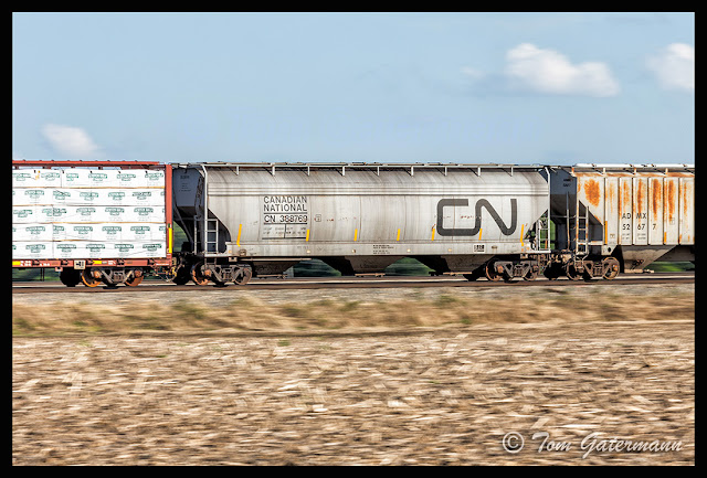 A CN covered hopper car in motion on the Centralia Subdivision.