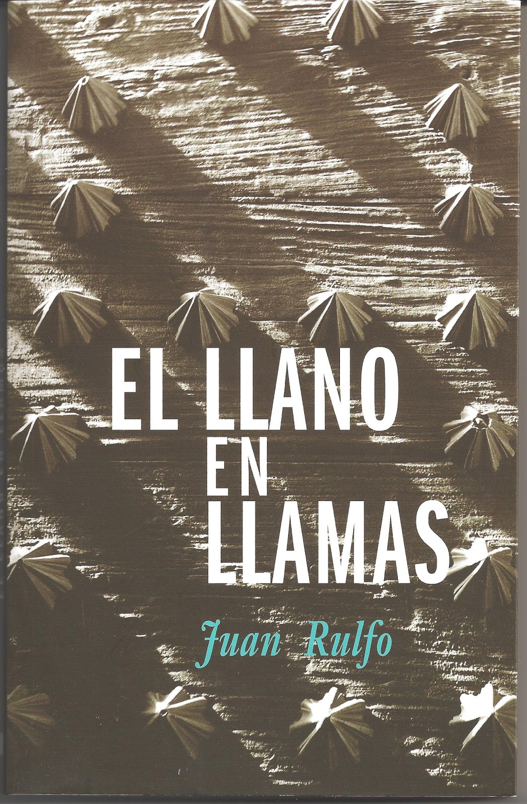 Lectores 47: XIII.- EL LLANO EN LLAMAS