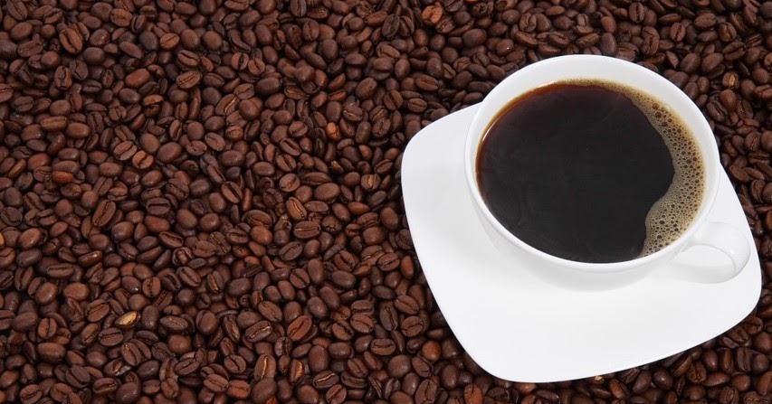 Contoh Bisnis Plan Cafe And Resto Lengkap dengan ...