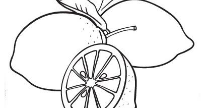 blog de geografia limão desenho para imprimir e colorir