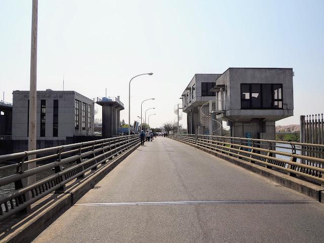 権現堂川 中川 水門