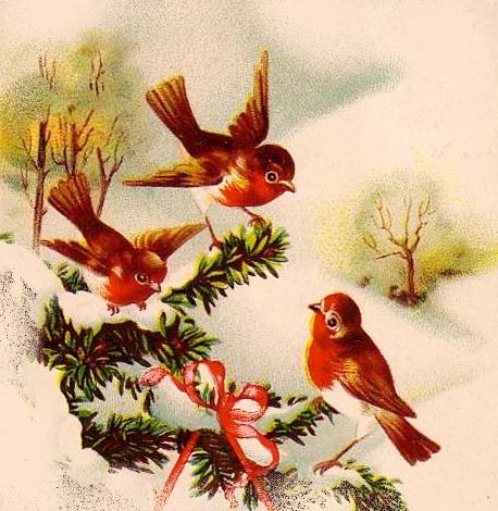 Image ancienne hiver avec oiseaux