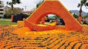 Portakal Çiçeği Festivali nerede düzenlenmektedir?