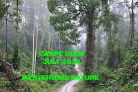 http://chevrefeuillescarpediem.blogspot.in/2016/07/carpe-diem-1003-fir.html
