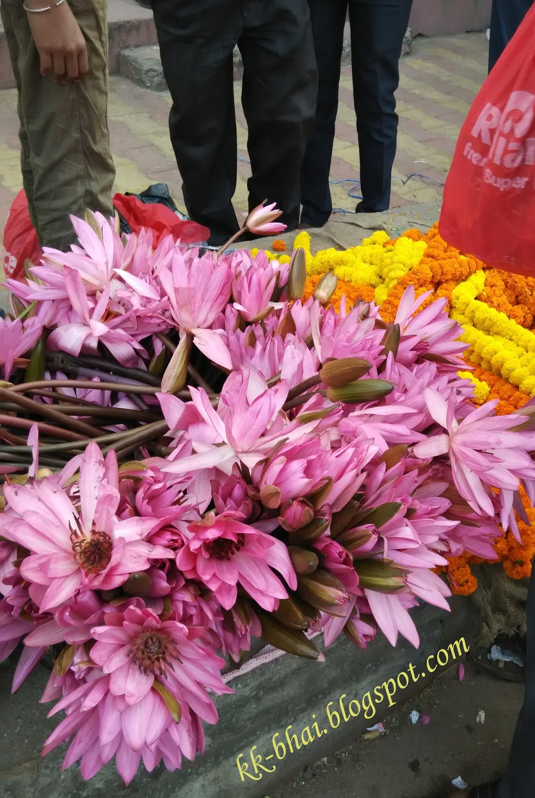 Puja flowers and other things used in puja hindu worship lotus flower on sale for laxmi puja izmirmasajfo