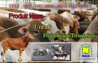 AGEN NASA DI Sekrak Aceh Tamiang - TELF 082334020868
