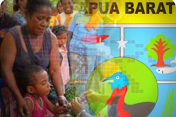 Cegah Penularan Malaria, Pemprov Papua Barat Berikan Penghargaan ke Petugas