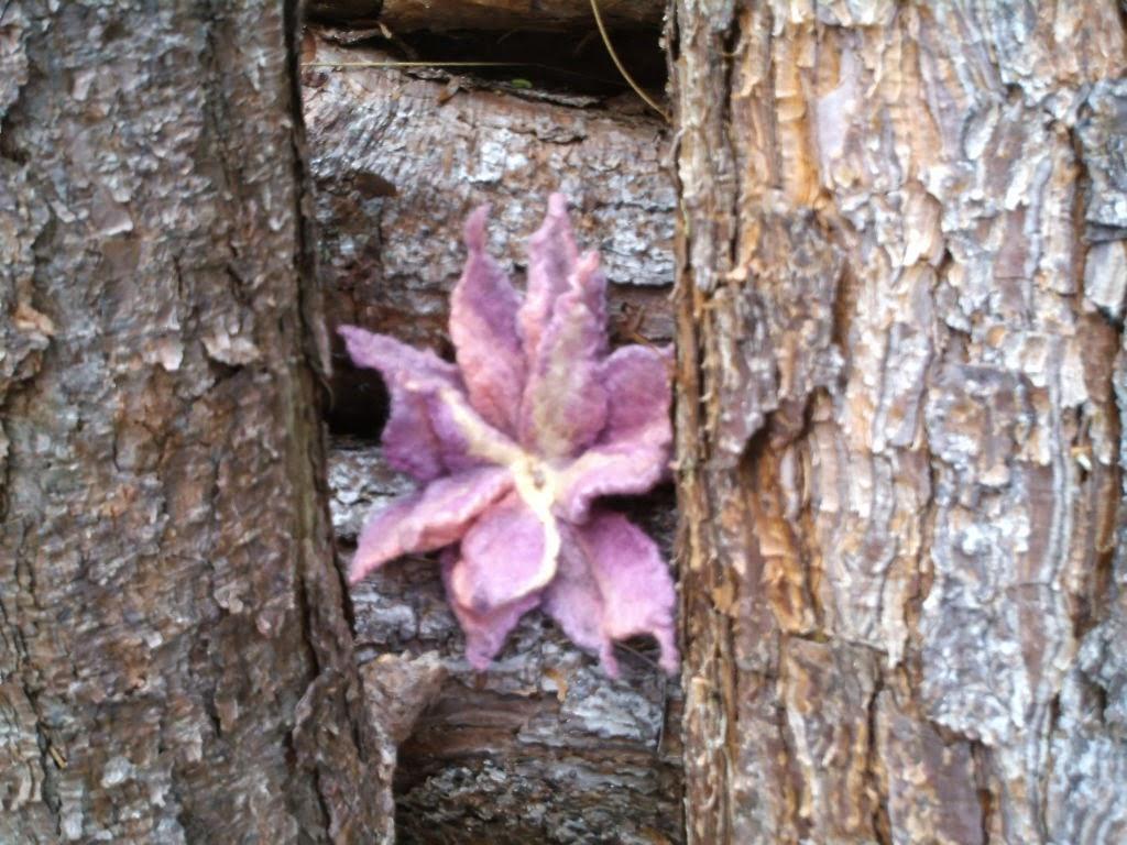 flore feltrada no meio de galhos grossos de pinheiro