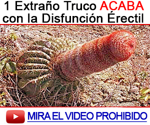 arginina ereccion