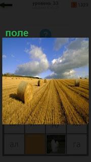 на поле собрана солома в тюки до самого горизонта