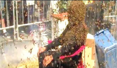 Man sets new Guinness world record for wearing beard made of bees