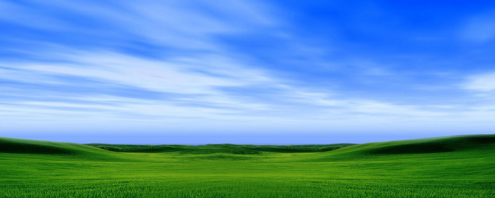 Windows Xp Fall Wallpaper Wallpaper High Quality Nature Wallpaper