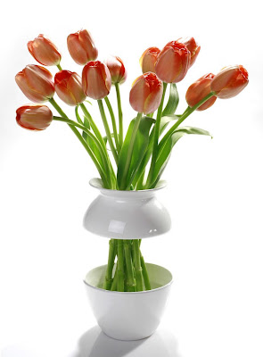 Unusual Vases and Creative Vase Designs (20) 11