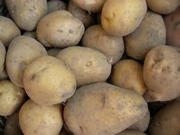kentang goreng, donat kentang, masakan kentang,