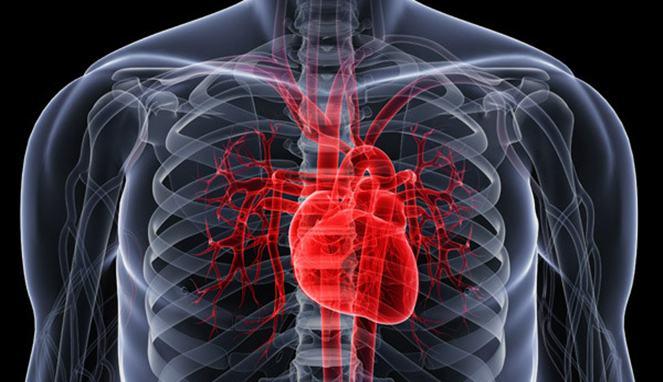 Mencegah Penyakit Arteri Koroner