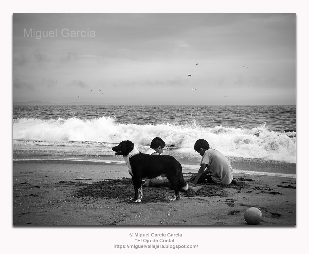 Muchachos jugando en la arena con perro y pelota. Playa Arica - Lurín (Perú)
