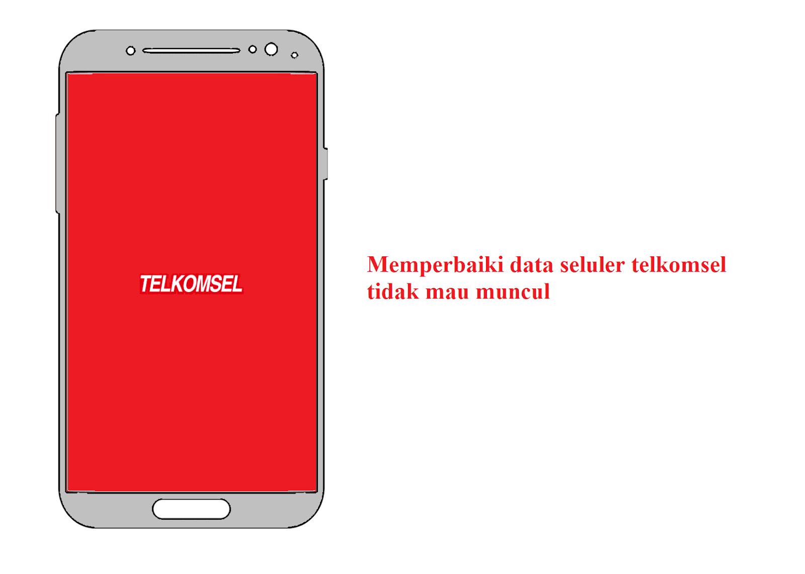 Data seluler telkomsel tidak aktif