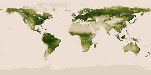World Vegetation Map by NASA and NOAA shows differences in Green